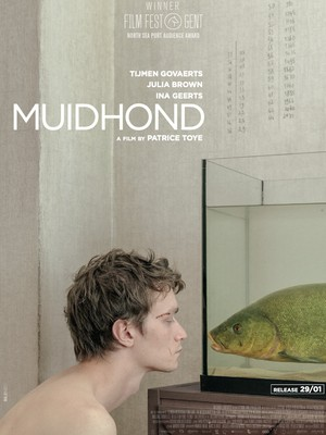 Muidhond -
