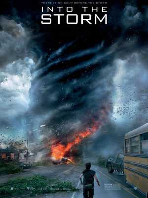 Into the Storm - Thriller