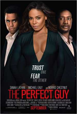 The Perfect Guy - Thriller