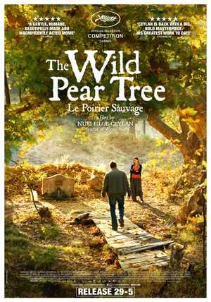 The Wild Pear Tree - Drama