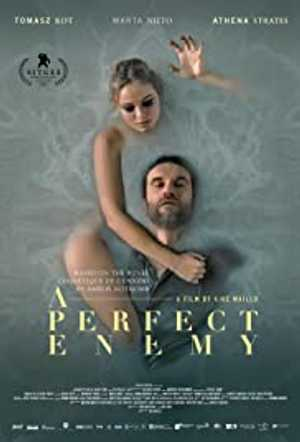 A Perfect Enemy - Thriller