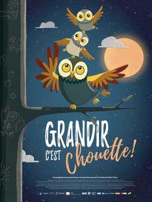 Grandir c'est Chouette ! - Animation (modern)