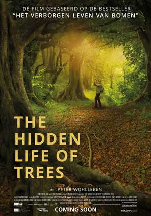 The Hidden Life of Trees - Documentaire
