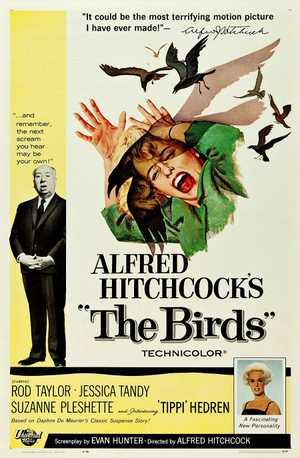 Les Oiseaux - Thriller, Horreur