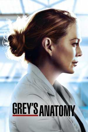 Grey's Anatomy - Drame