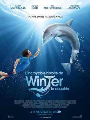 Dolphin Tale - Drama, Familie