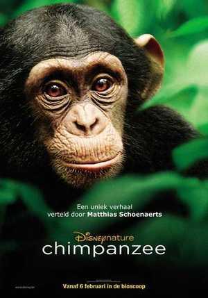 Chimpanzee - Documentaire