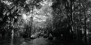 Into the Amazon