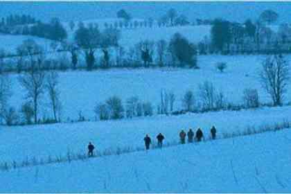 Last Winter - Picture 4