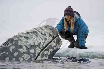 Big Miracle - Picture 6