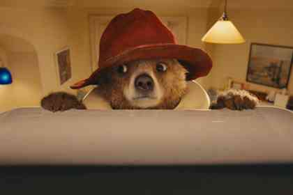 Paddington Bear - Picture 7