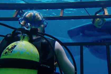 47 Meters Down - Picture 4