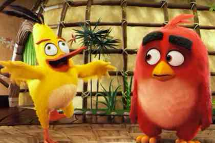 Angry Birds - Picture 2