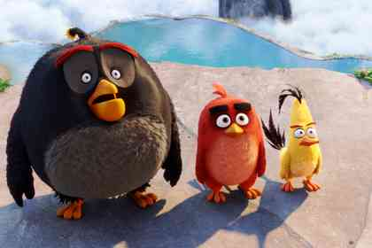 Angry Birds - Picture 6