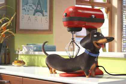 The Secret Life of Pets - Picture 3