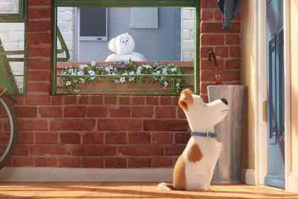 The Secret Life of Pets - Picture 8