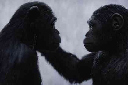 War for the Planet of the Apes - Picture 13