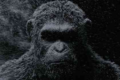 War for the Planet of the Apes - Picture 4