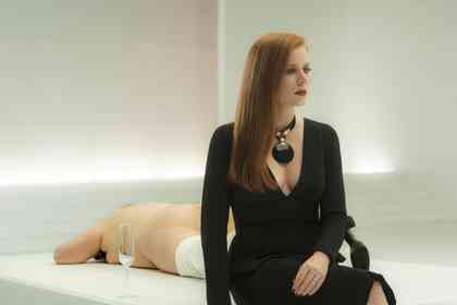 Nocturnal Animals - Picture 2