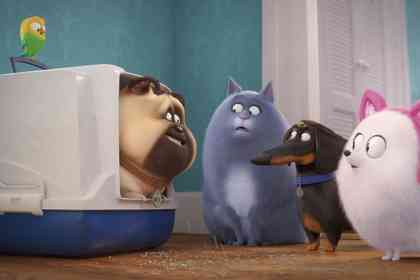 The Secret Life of Pets 2 - Picture 1