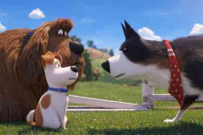 The Secret Life of Pets 2 - Picture 8