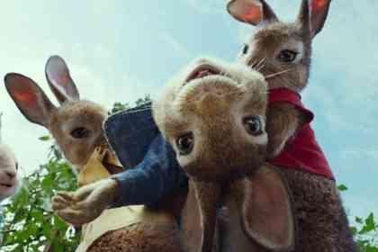 Peter Rabbit - Picture 1