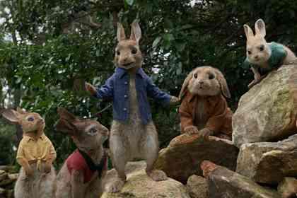 Peter Rabbit - Picture 5
