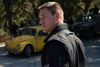 Bumblebee - Picture 3