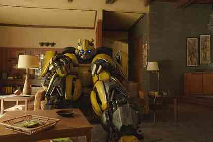 Bumblebee - Picture 5