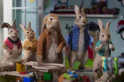 Peter Rabbit 2 - Picture 1