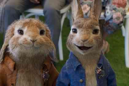 Peter Rabbit 2 - Picture 4