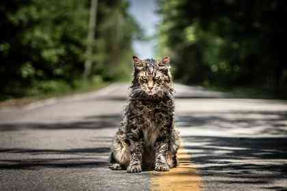 Pet Sematary - Picture 1