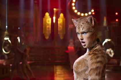 Cats - Picture 1