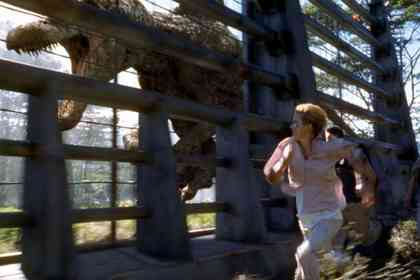 Jurassic Park 3 - Picture 2