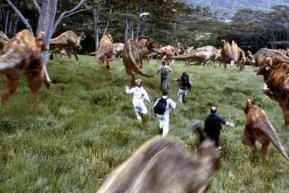 Jurassic Park 3 - Picture 3