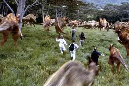 Jurassic Park 3 - Picture 3