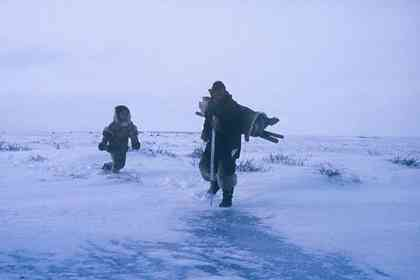 The Snow Walker - Picture 7