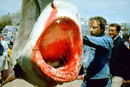 Jaws - Picture 7