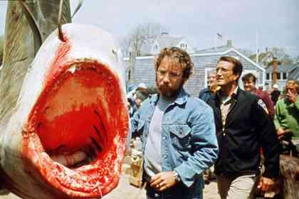 Jaws - Picture 10