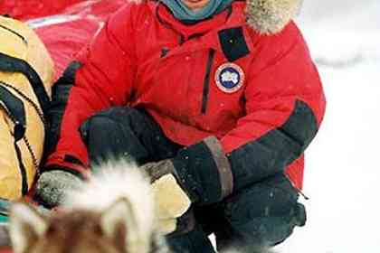 Eight Below - Picture 1