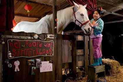 Waar is het paard van Sinterklaas ? - Picture 2