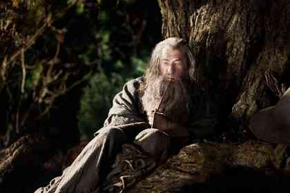 The Hobbit : An Unexpected Journey - Picture 5