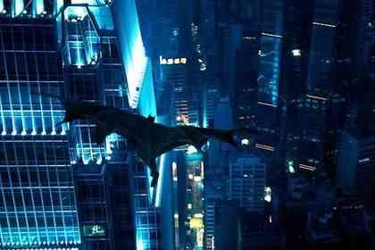 The Dark Knight - Picture 3