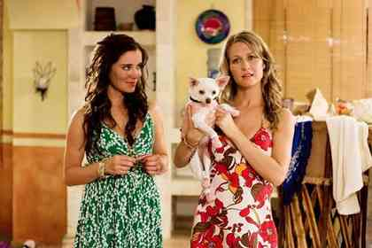 Beverly Hills Chihuahua - Picture 4