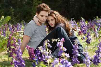 The Twilight Saga: Breaking Dawn (part 2) - Picture 15