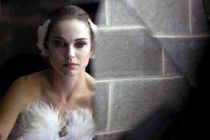 Black Swan - Picture 8