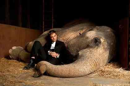 Water for Elephants - Picture 6