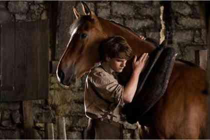 War Horse - Picture 8