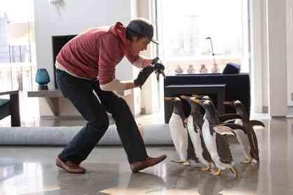 Mr. Popper's Penguins - Picture 3