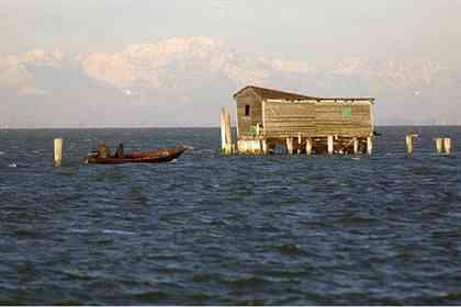 La Petite Venise - Photo 3